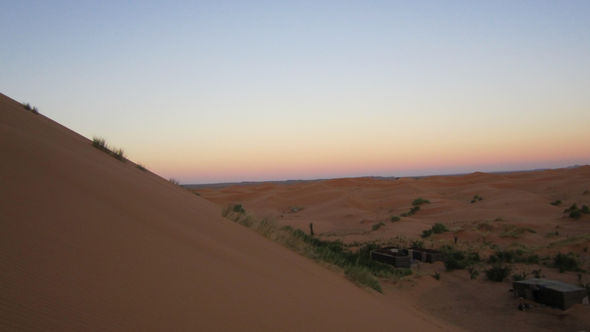 Sleeping Under The Sahara Desert NightSky