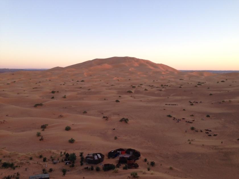 Camping in Sahara
