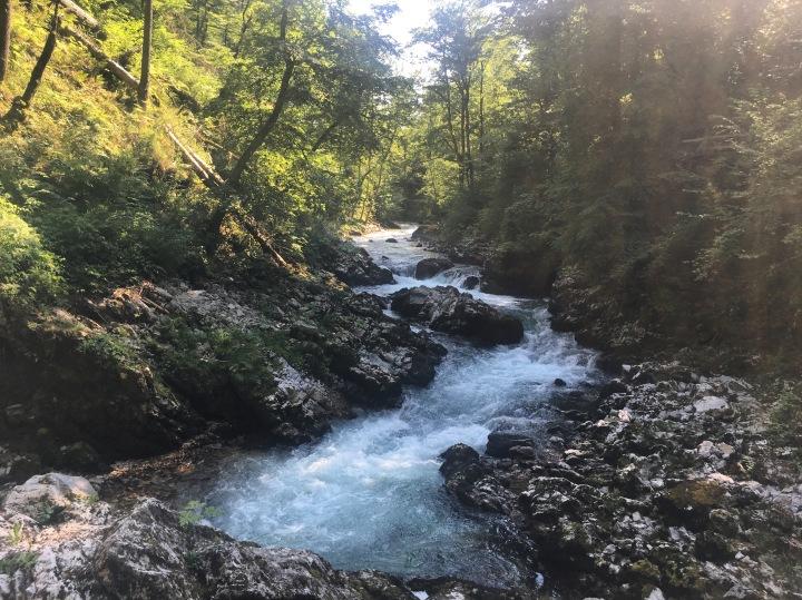 Slovenia Vintgar Gorge