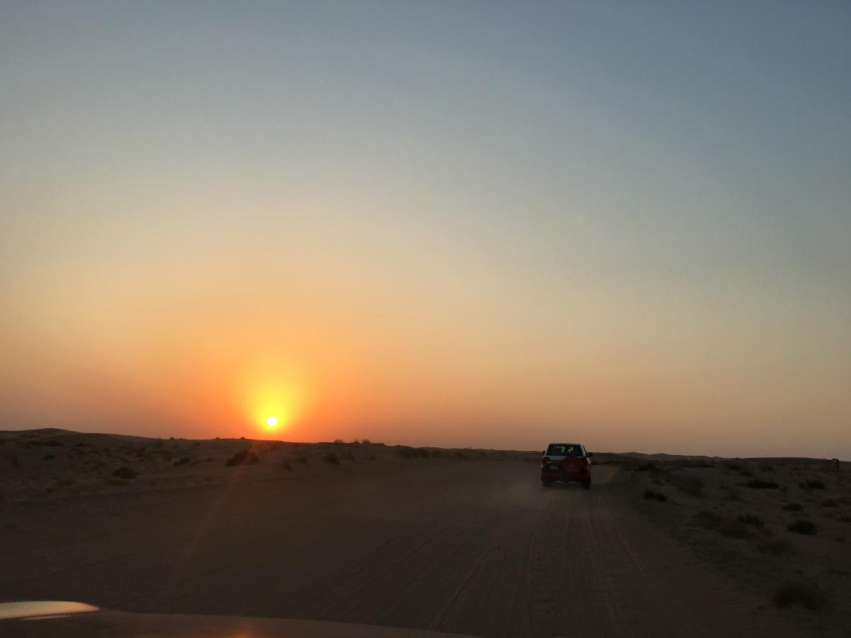 An Arabian Desert SafariAdventure