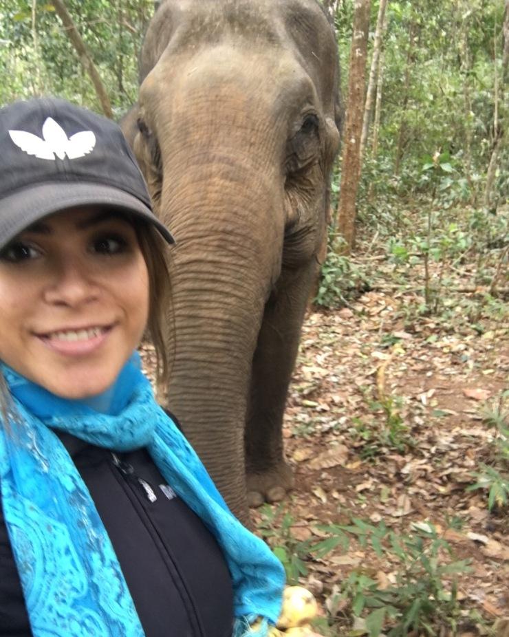 elephant sanctuary mondulkiri